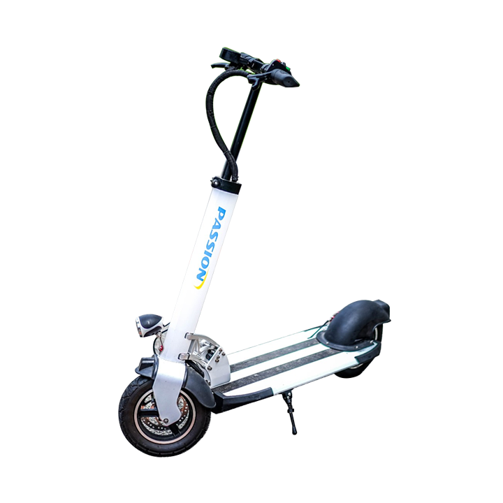 [Display Set] Passion 10 Electric Scooter