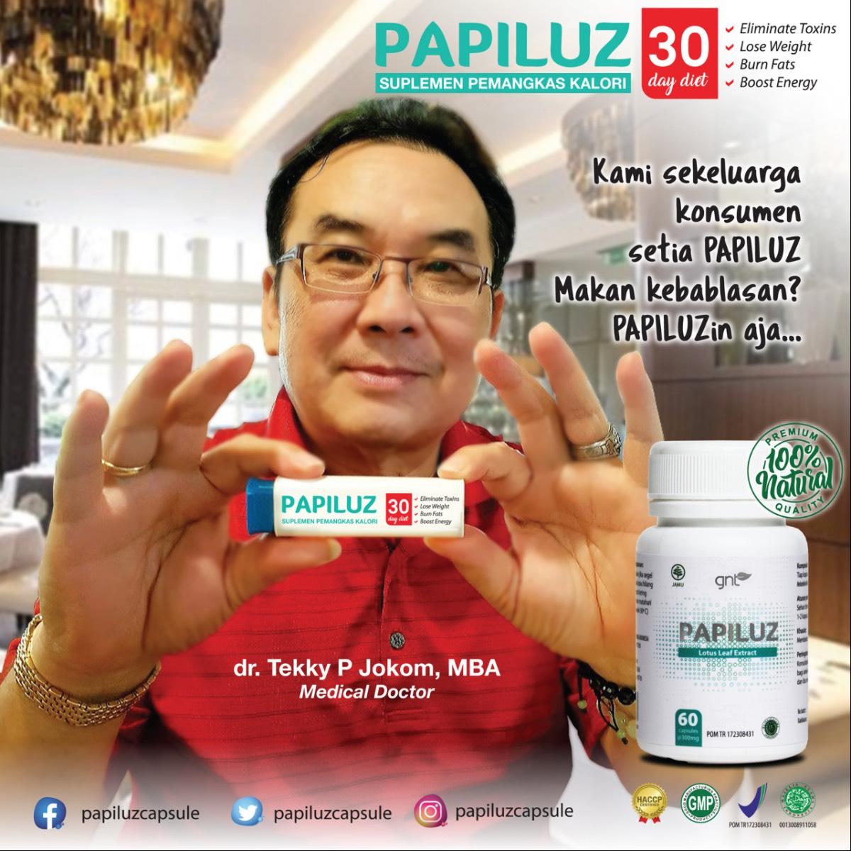 Gnt Papiluz1