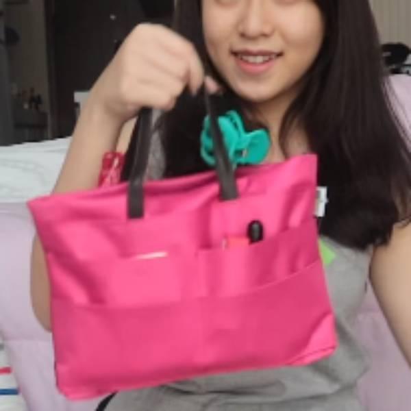 Bag In Bag Organizer Bahan Longcham2