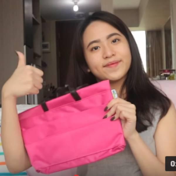 Bag In Bag Organizer Bahan Longcham3