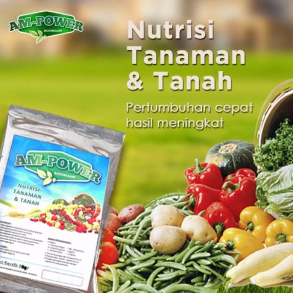 Am-power Bio Stimulant ( Nutrisi Tanaman & Tanah ) - Grosir3