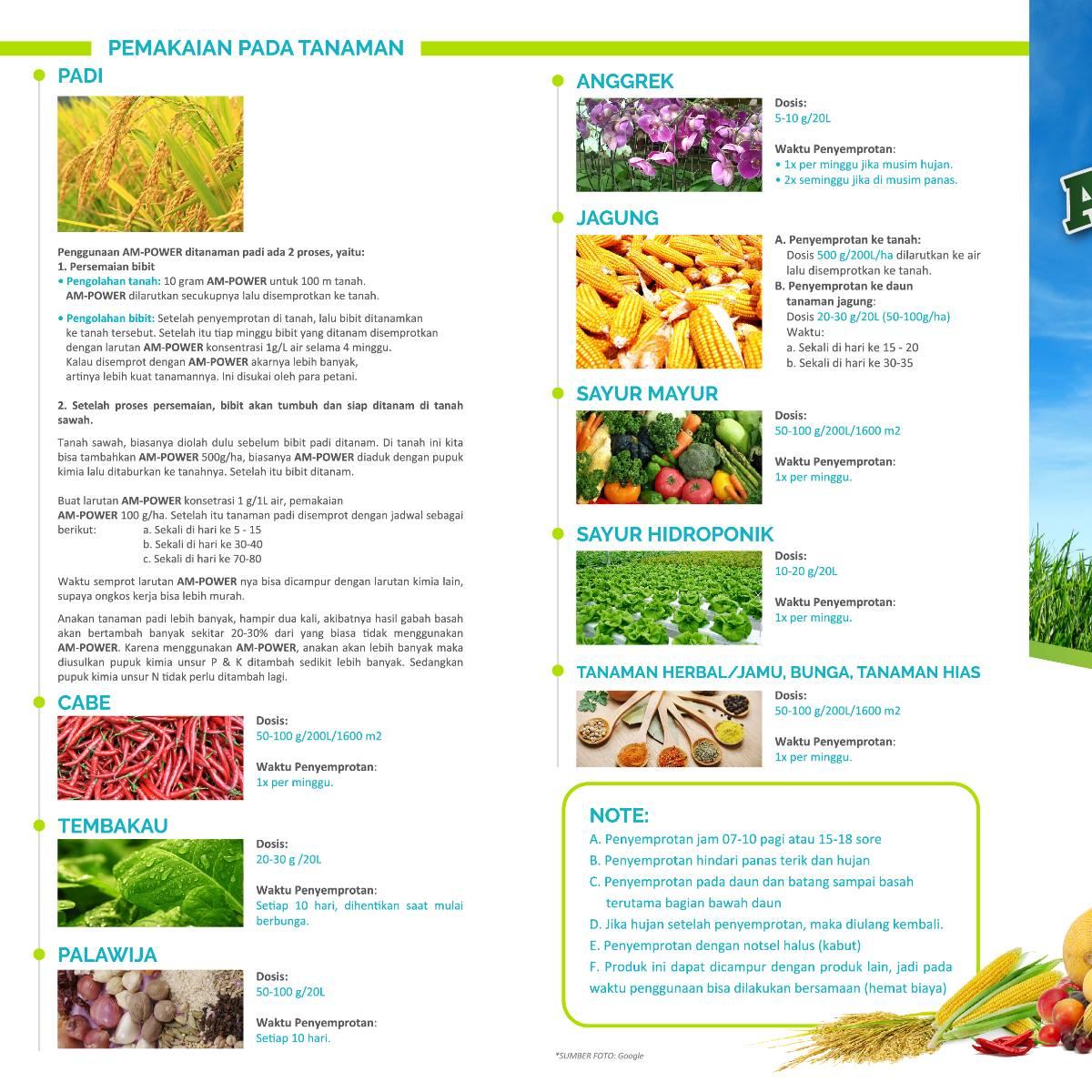 Am-power Bio Stimulant ( Nutrisi Tanaman & Tanah )2