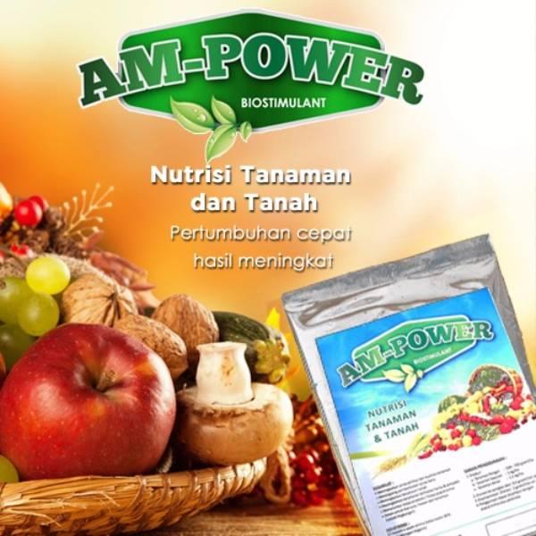 Am-power Bio Stimulant ( Nutrisi Tanaman & Tanah )3