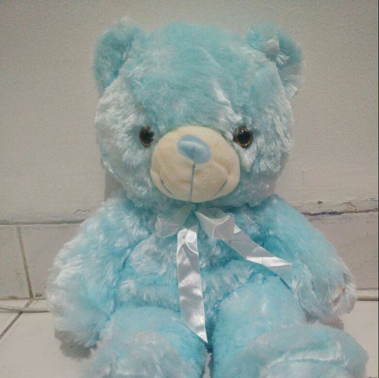 Changing Color Teddy Bear (boneka Import) - Sale !!!1
