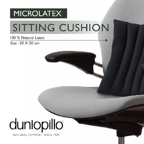 Sitting Cushion Dunlopillo 50x504