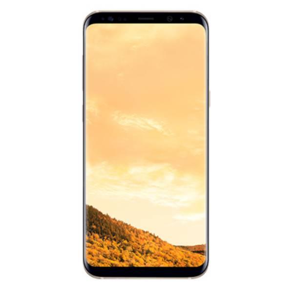 Samsung Galaxy S8+ Sm-g955f1