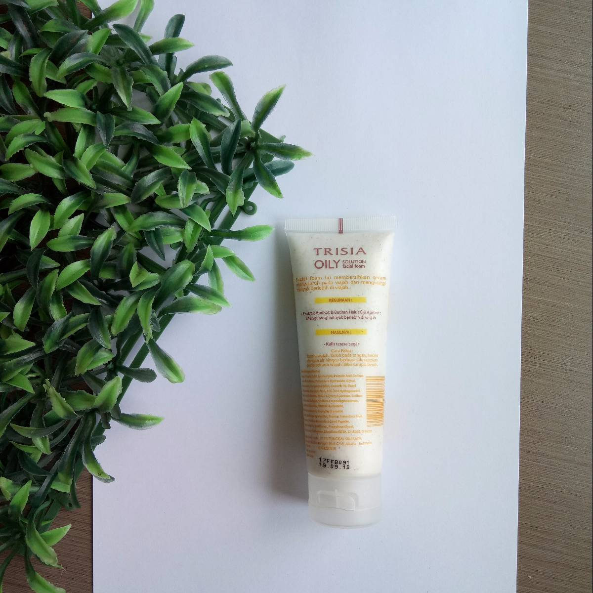 Trisia Oily Solution Facial Foam Wtih Apricot Extract1