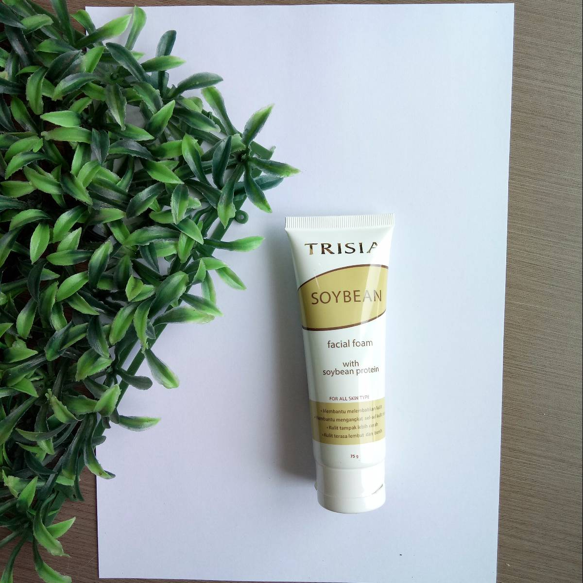 Trisia Soybean Facial Foam With Soybean Protein 75 Gr0