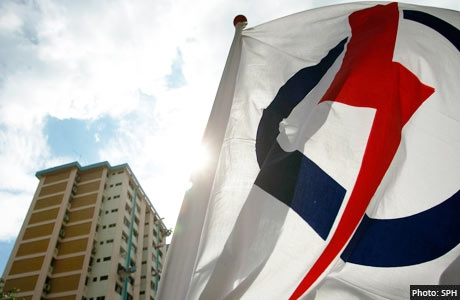 PAP Flag HDB background
