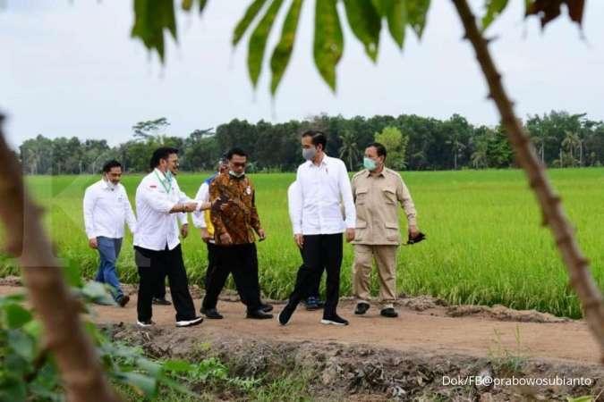 Tugas berat Prabowo Subianto mengawal produksi gabah 1,48 juta ton di food estate