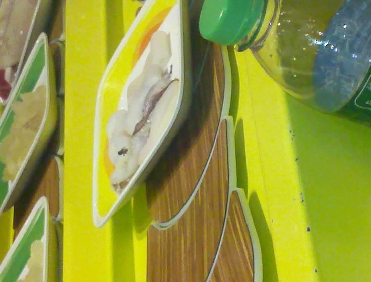 แมลงวัน ที่ ร้านอาหาร โคขุนโพนยางคำ แฟชั่นไอซ์แลนด์