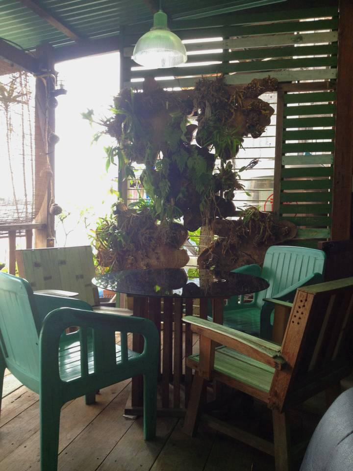 แดดอ่อนๆยามบ่าย บรรยากาศดีมากๆคะ ที่ ร้านอาหาร Samsara Cafe & Meal