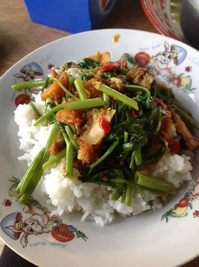ผัดผักบุ้งหมูกรอบราดข้าว ที่ ร้านอาหาร อาหารตามสั่ง ชายทุ่ง