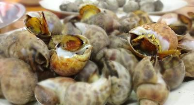 หอยหวานเผา (โลละ ฿200) ที่ ร้านอาหาร ป. เป้า-จอยกุ้งเผา ตลาดกุ้งกลาง ณ อยุธยา