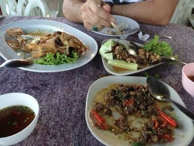 ปลาทับทิมทอดน้ำปลา ลาบหมู กบผัดกะเพรา ที่ ร้านอาหาร เจอาร์ควีน