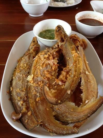 ปลาเนื้ออ่อนทอดกระเทียม • ตัวขนาดกลางกรอบดี ที่ ร้านอาหาร ครัวม่อนไข่