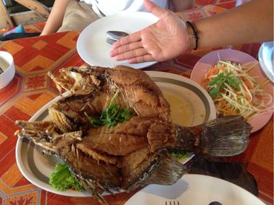 ปลากระพงทอดราดน้ำปลา ที่ ร้านอาหาร วาสนาฟิชชิ่งปาร์ค ระยอง