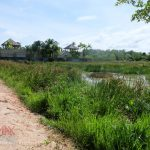 Sold Out – CHERNGTALAY LAND 1 RAI FOR SALE