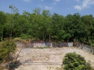 400 SQM Land In Rawai