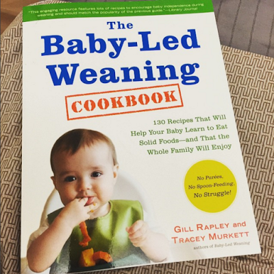 BLW Cookbook