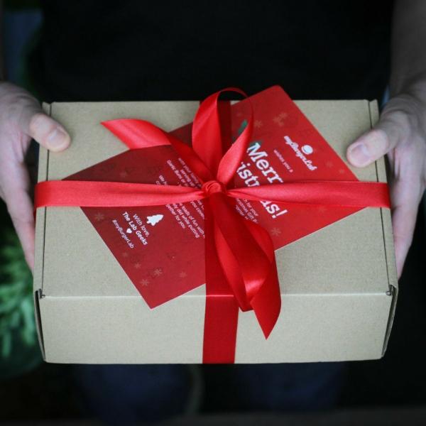 Christmas Kit [Beef] 🐮