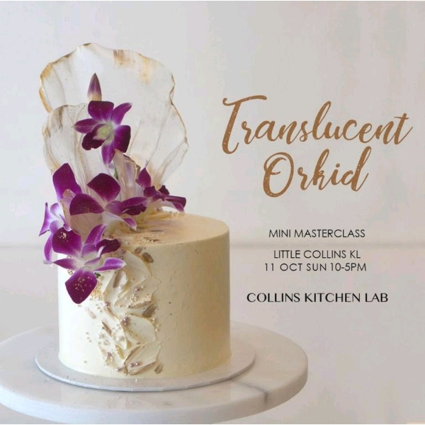 Translucent Orkid