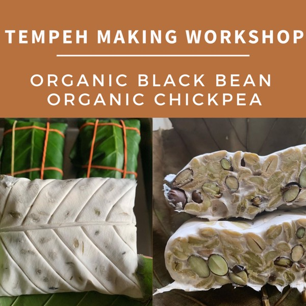 Tempeh Making Workshop0