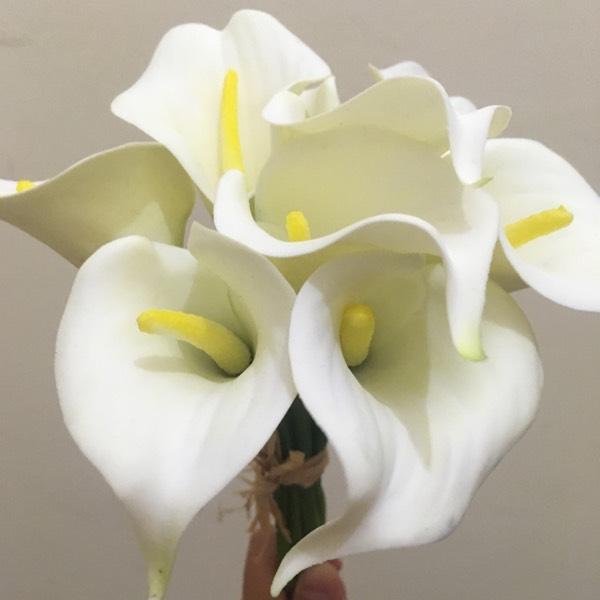 Flower - Calla Lily White0
