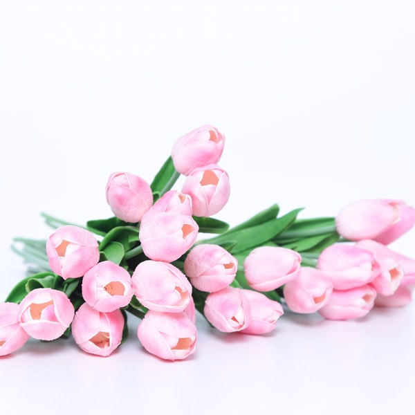 Flower - Tulips Pink0