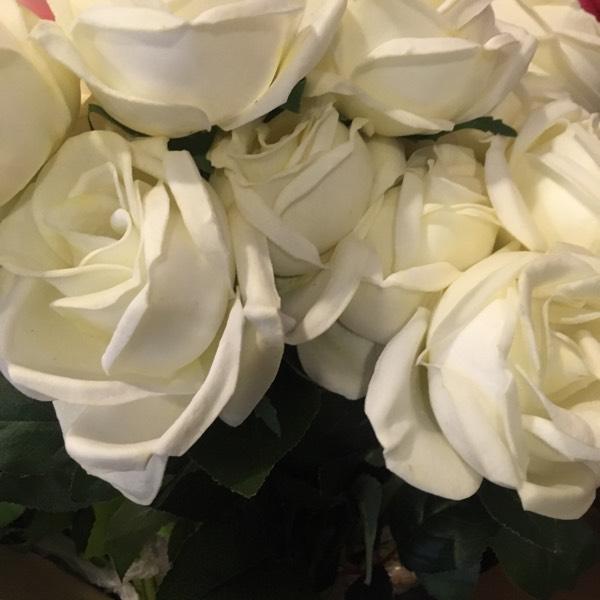 Flower - Rose White0