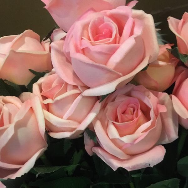 Flower - Rose Pink0