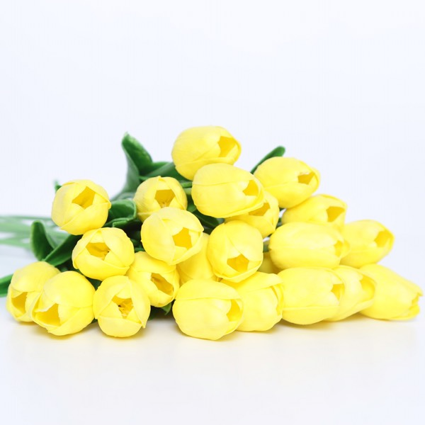 Flower - Tulips Yellow0
