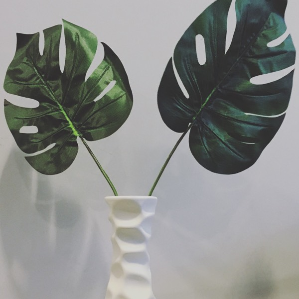 Flower - Monstera Leaves0