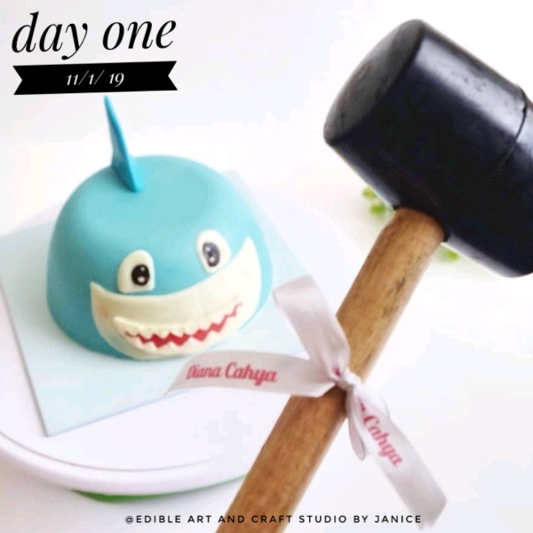 11 Jan_Baby Shark Pinata Cake Workshop0