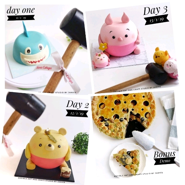 13 Jan_ Piglet Pinata Cake Workshop1