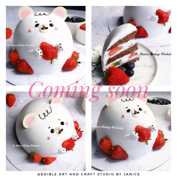 26/5 3D Sweetie Bear With Strawberry Shortcake Workshop0