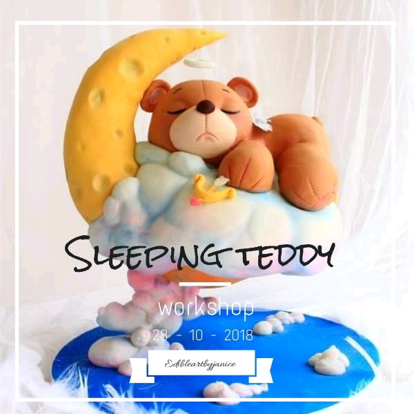 28_Oct Slepping Teddy Cakes Hands On Workshop
