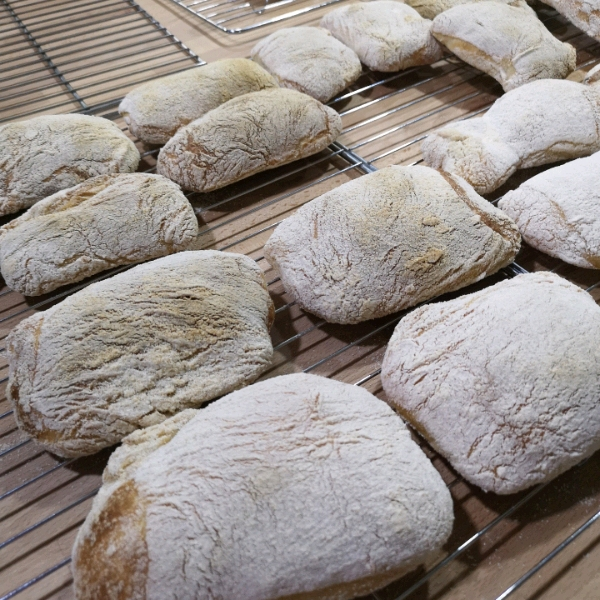8/4 Sourdough Ciabata  Hands on Workshop1