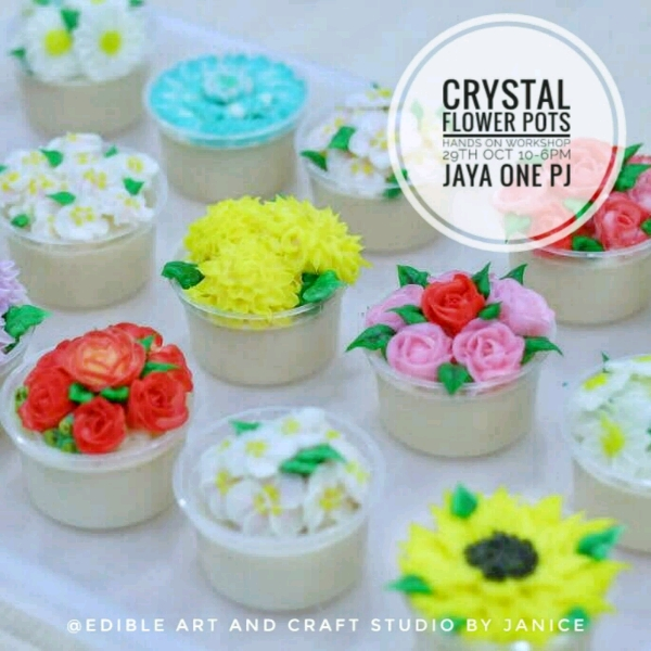 Crystal Jelly Cream flower Pots Workshop0