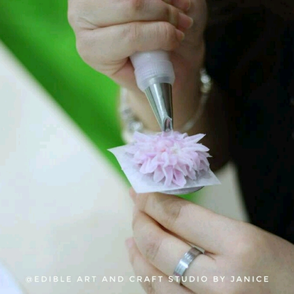 Crystal Jelly Cream flower Pots Workshop2