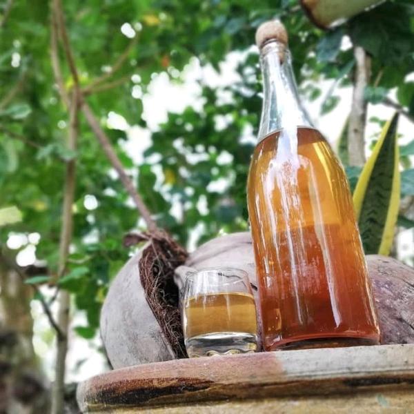 天然酵母 & 水果酒 工作坊1
