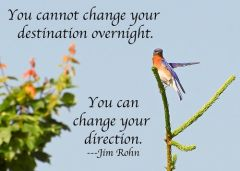 You cannot change your destination