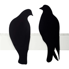 Matching Love Birds Display