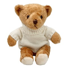 Exclusive Sasha's Bear Goldie