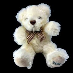 Lovely Sasha's Bear Sandy