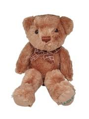 Lovely Sasha's Bear Pudge