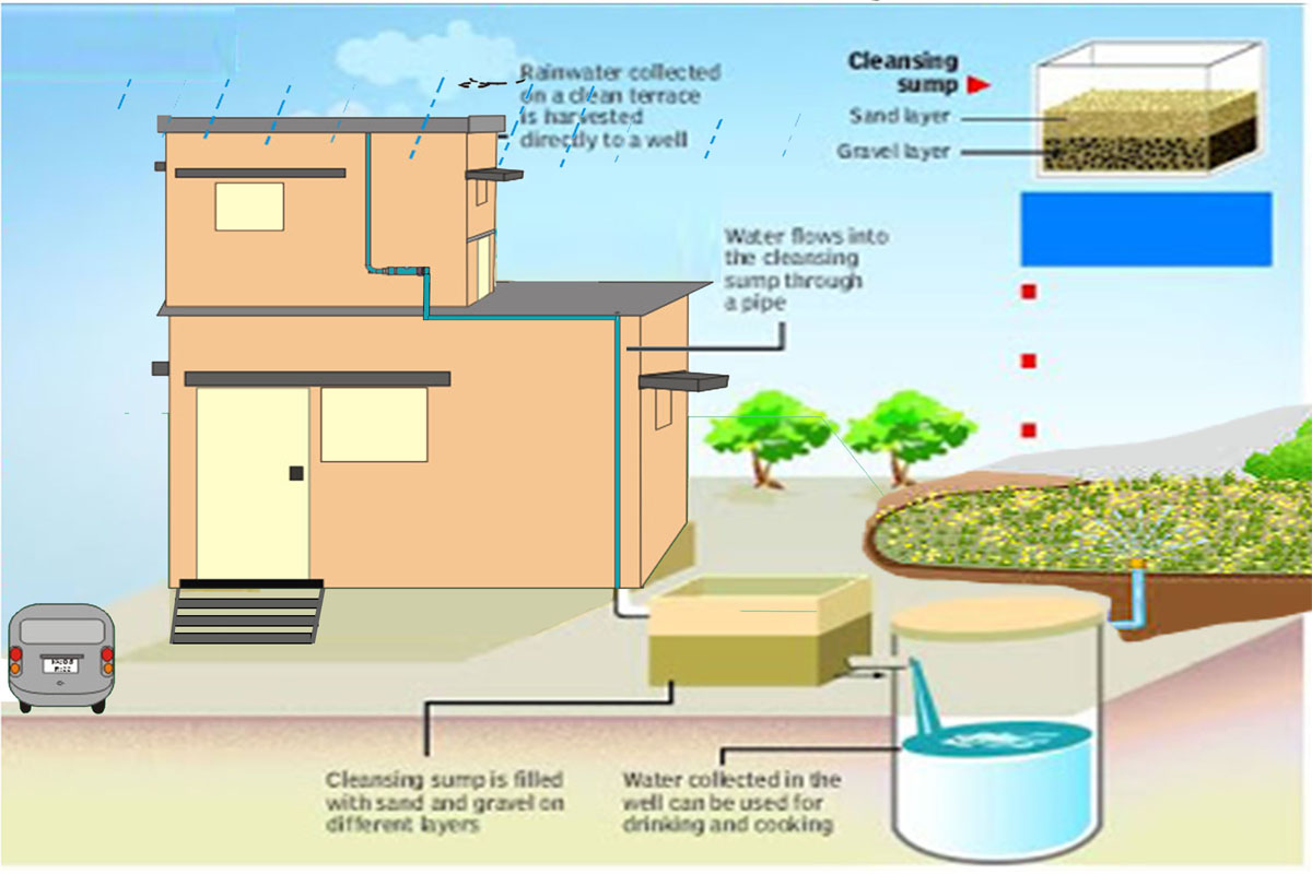 how to do rainwater harvesting at home in india