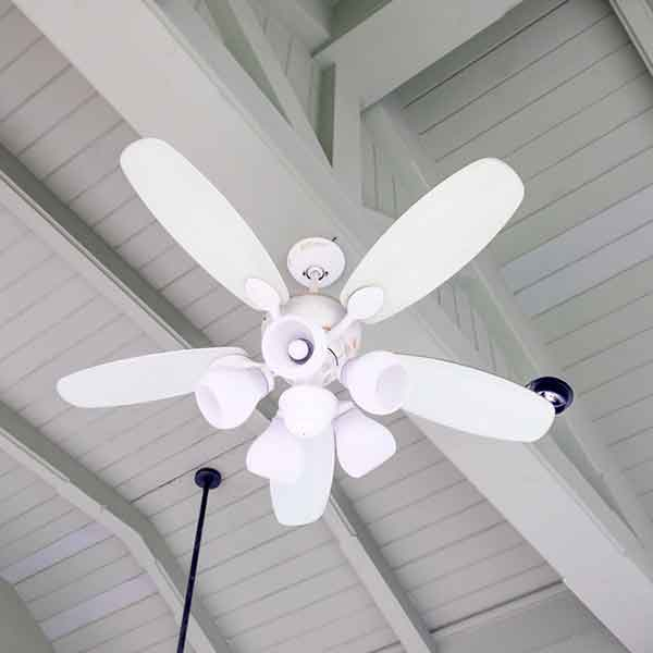 8 types of fans for residential use homeonline 7electric fans aloadofball Images