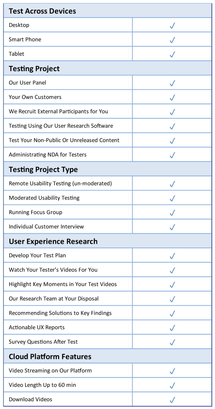 Enterprise Features for Remote Usability Testing Focus Group Customer interview
