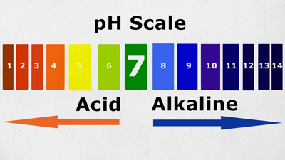 How to Balance Your pH and Find Out If You're Too Acidic. Image Size:400x225px